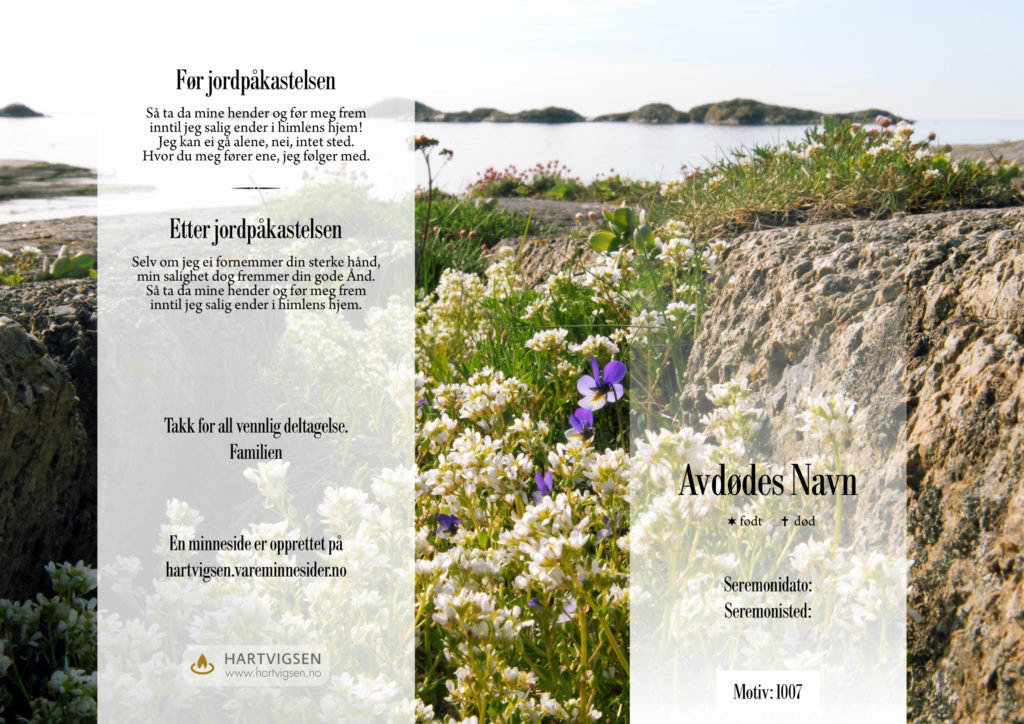 1007 Kystlandskap blomster [22257]