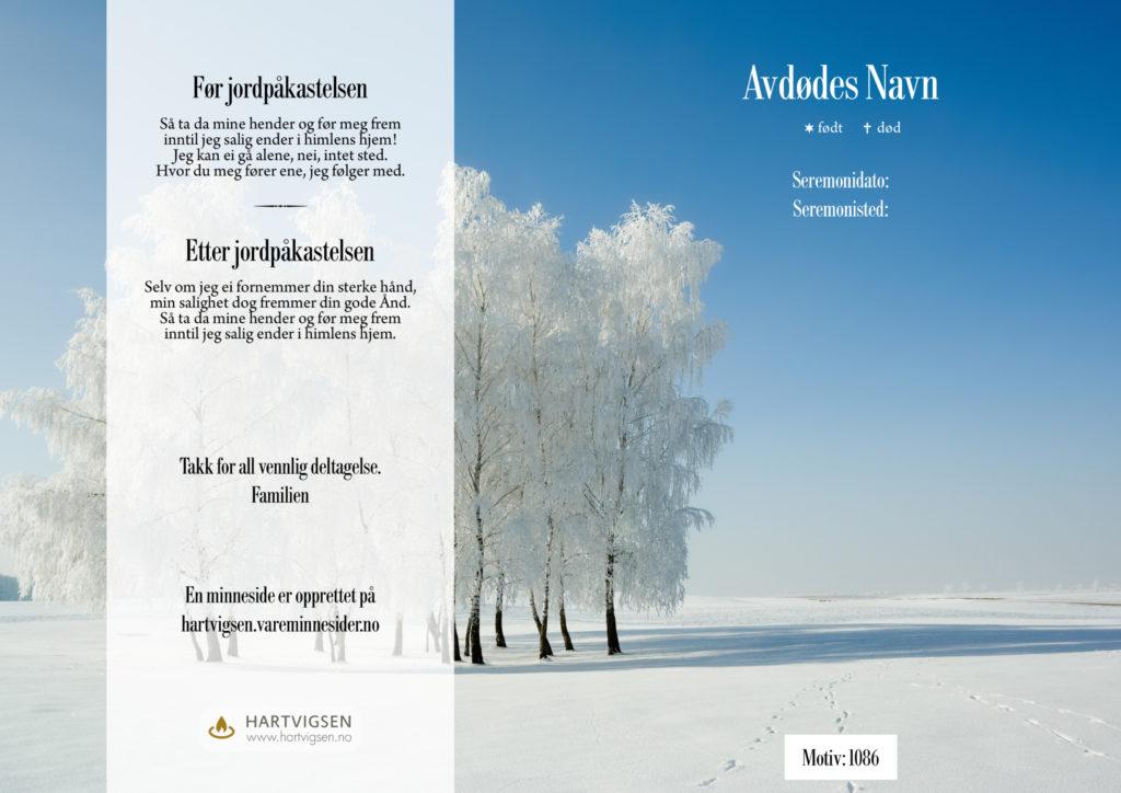 1086 Vinterfrost på bjørketrær [22266]