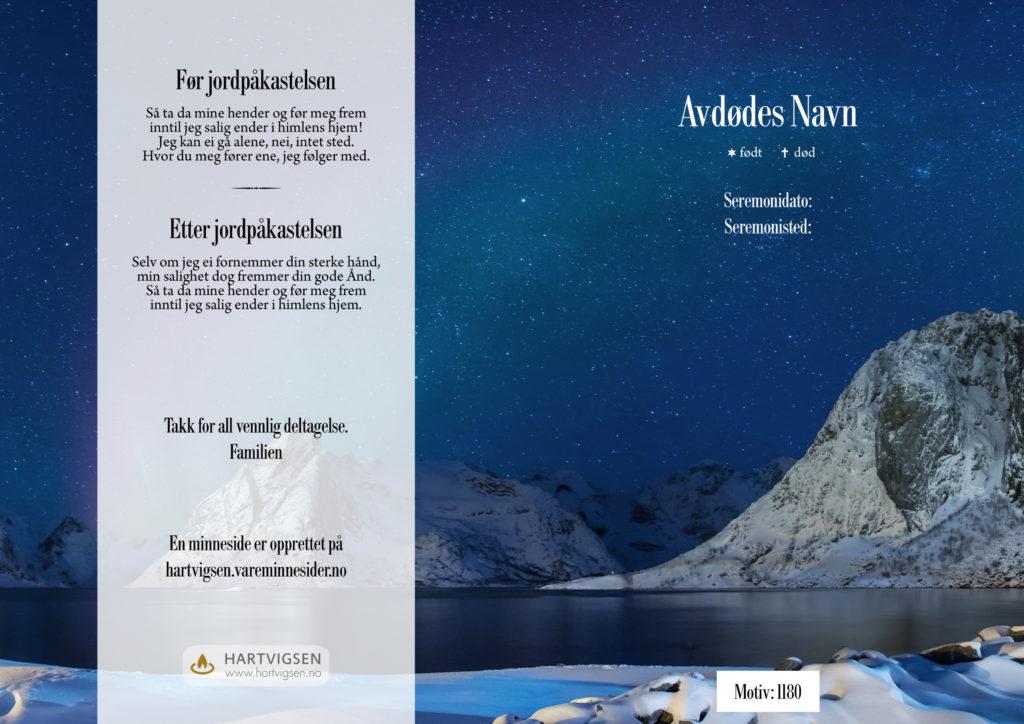 1180 Nordlys over Lofoten [22268]