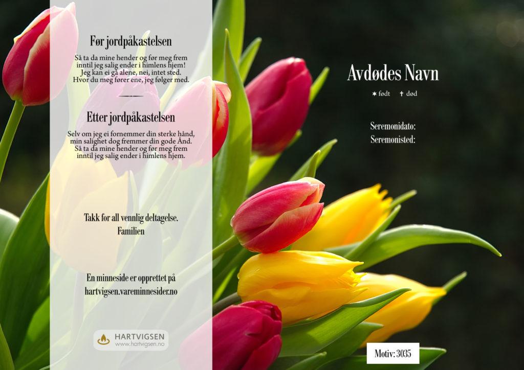 3035 Tulipaner [22272]