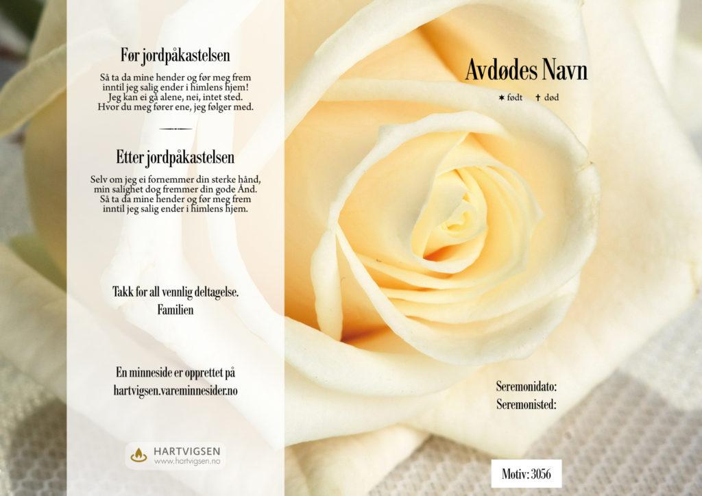 3056 Stor hvit rose [22273]